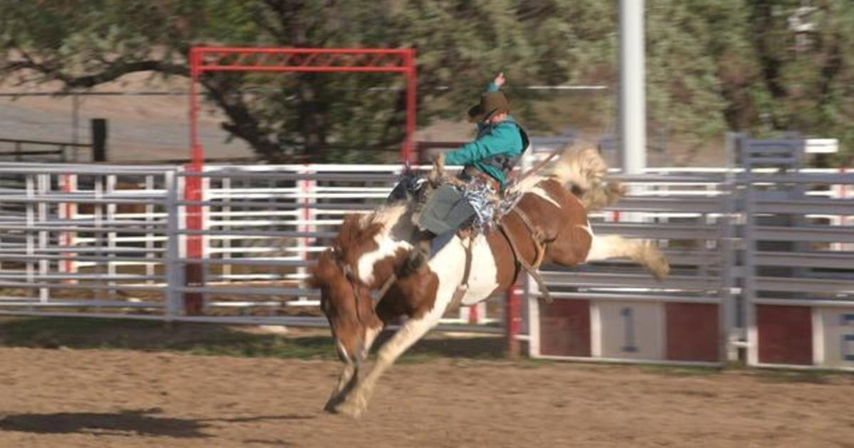 The family that dominates saddle bronc riding