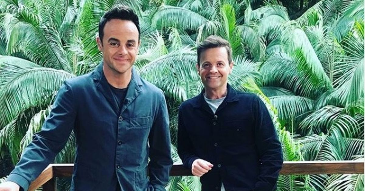 I'm A Celeb stars to battle for food as 'seagull muggings' reported near set
