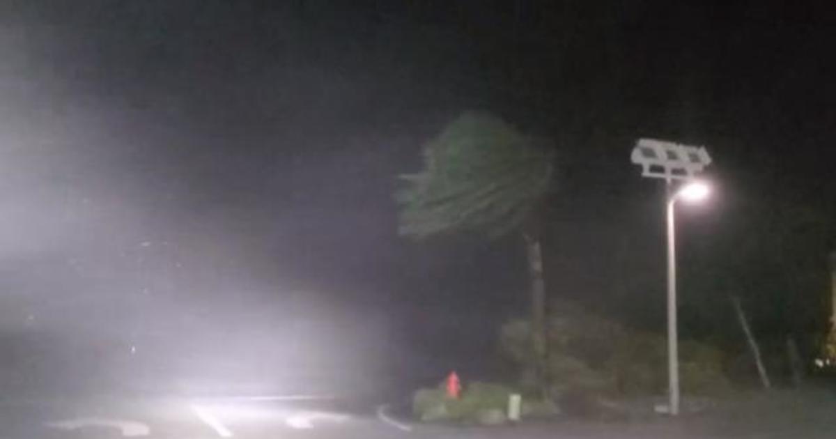 Hurricane Sally makes landfall as Category 2 storm