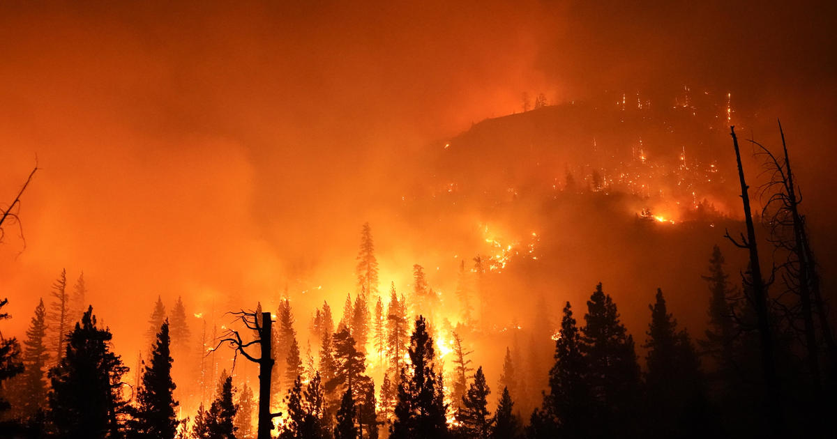 Record-smashing heat in California as wildfires burn statewide