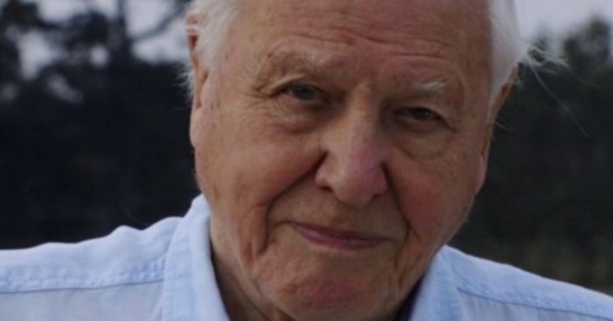 David Attenborough joins Instagram at the age of 94 with savage first post