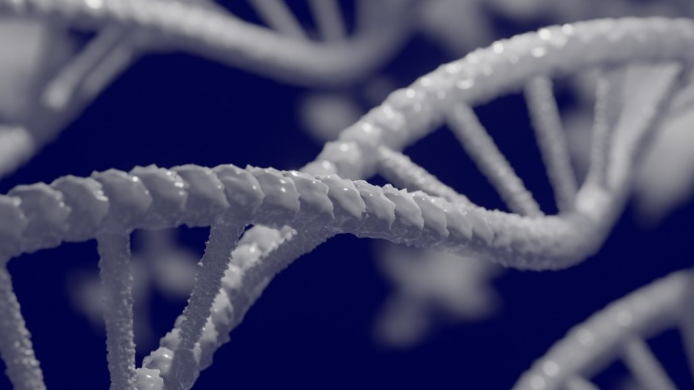 Research Shows The Fight Against COVID-19 May Be On A Genetic Level