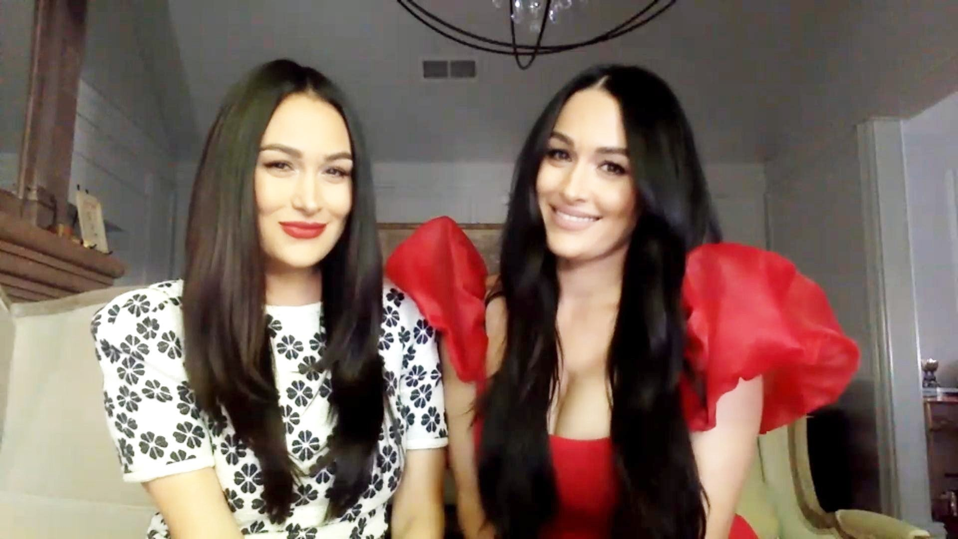 Nikki And Brie Bella – Are They Done Having Kids?