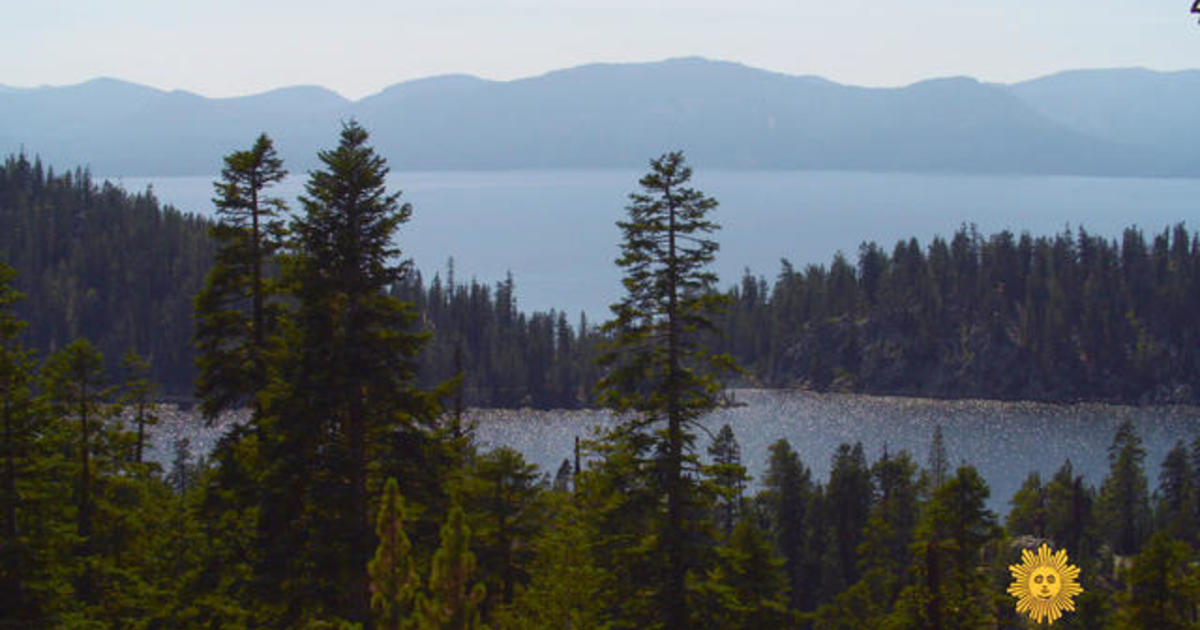Nature: California's Tahoe National Forest