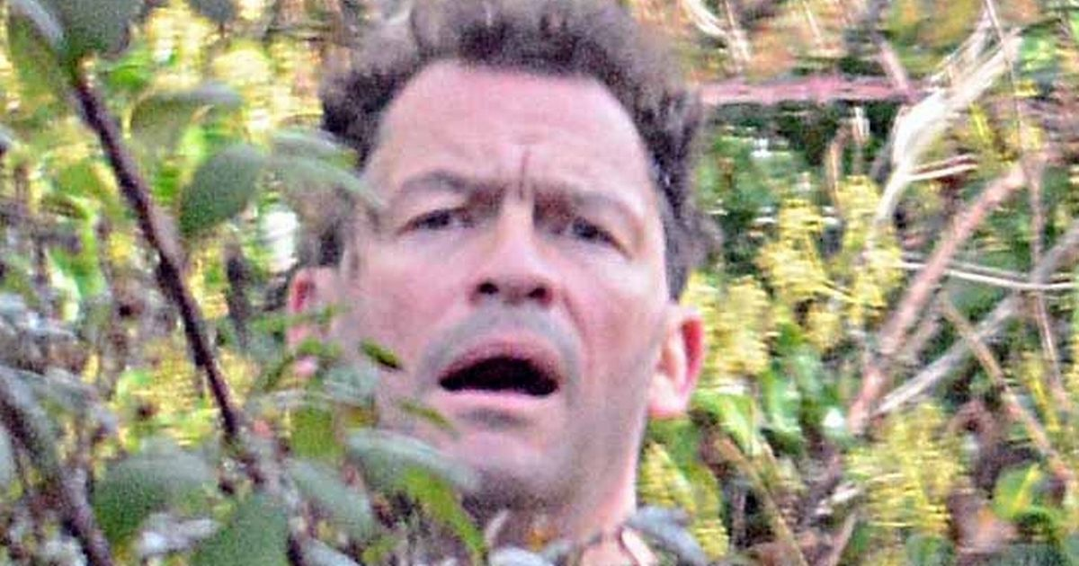 Dominic West hides in bushes on jog amid Lily James kissing scandal