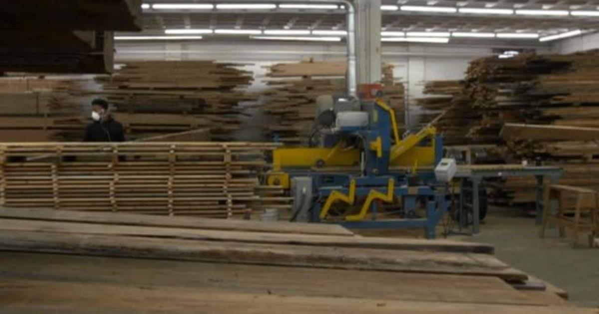 Urban wood movement aims to fight climate change and create jobs