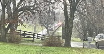 Police give details about horse and buggy crash that killed 3 minors